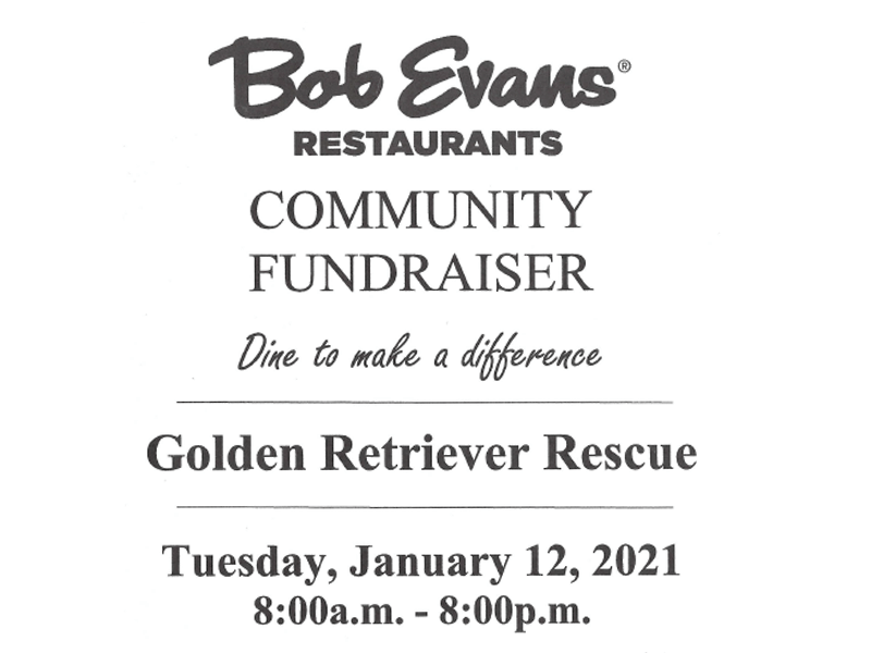 Fundraiser at Bob Evans Restaurants for Golden Retriever Rescue Resource, serving Ohio, Michigan and Indiana.