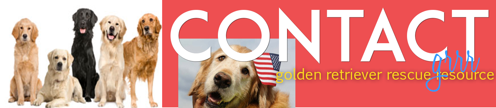 Contact Golden Retriever Rescue Resource header