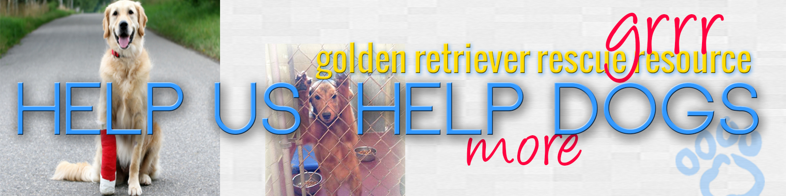 Help Us Help More Golden Retriever Dogs, Donate header