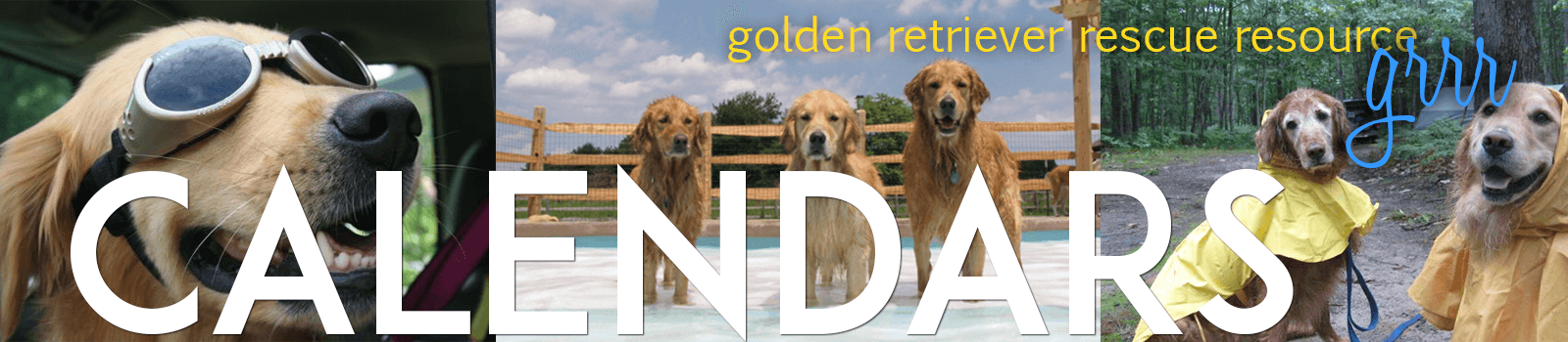 order a golden retriever calendar graphic