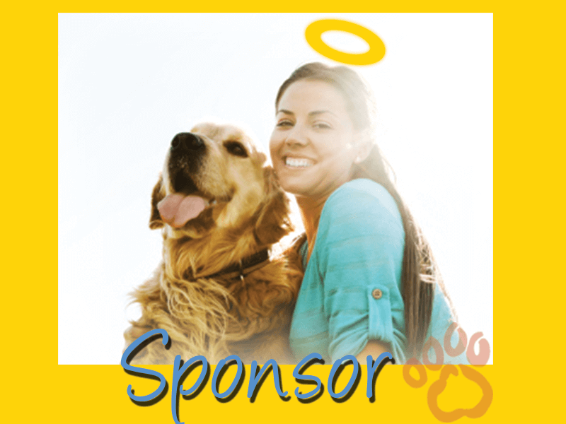 Sponsor a golden retriever graphic